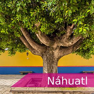 """<p><span class=""""s1"""">Tarjeta con vínculo a información de exámenes y certificaciones de Náhuatl</span></p>"""