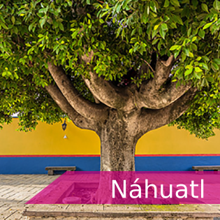<p>Tarjeta con liga al idioma nauhuatl</p>